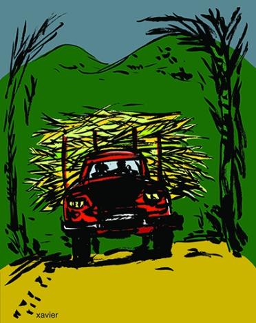 sugar cane truck campaign countryside landscape Mauritius Island Indian Ocean illustration xavier Transporte caña de azúcar camión campaña paisaje ile Mauricio el océano Índico ilustración transport canne à sucre camion campagne paysage ile maurice océan indien illustration xavier