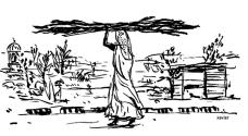 Inde femme bois xavier