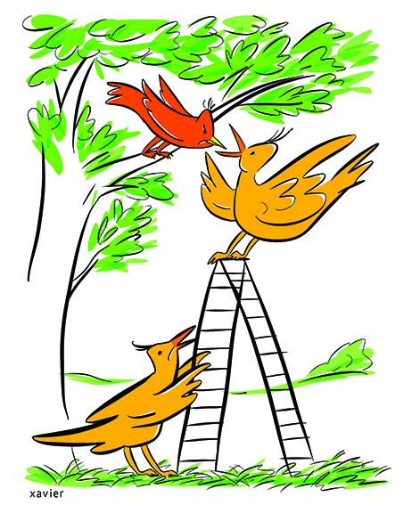Xavier illustration, humor, dessin d'humour